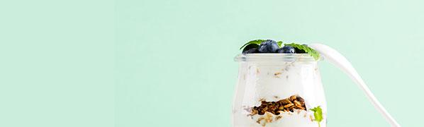 Yagurt & Blueberry